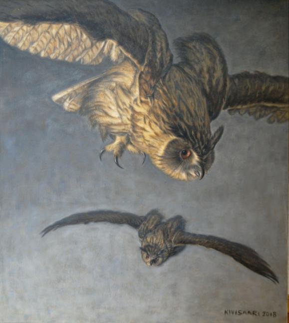 Kaksi lentävää huuhkajaa harmaalla taustalla.