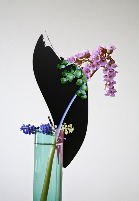 Kukka ruukussa, takana musta epäsäännöllinen muoto, valkoinen tausta.