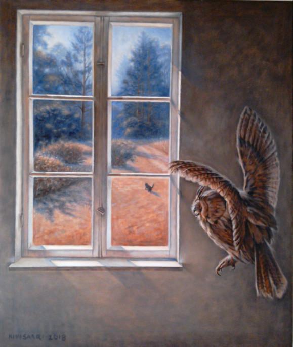 Ikkuna, josta näkyy värikäs piha ja kissa. Varjoisaa seinää vasten lentävä huuhkaja.