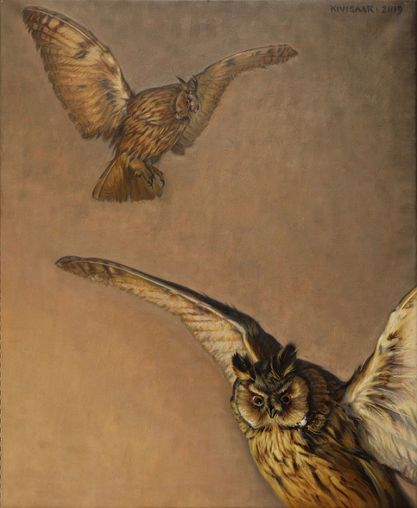 Kaksi huuhkajaa lennossa ruskeahkolla taustalla.