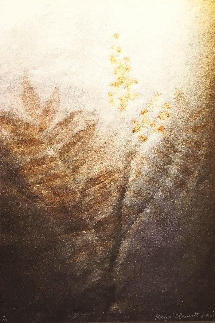 Ruskea ja valkoinen vedos jossa jonkinlainen häilyvä kasvi.