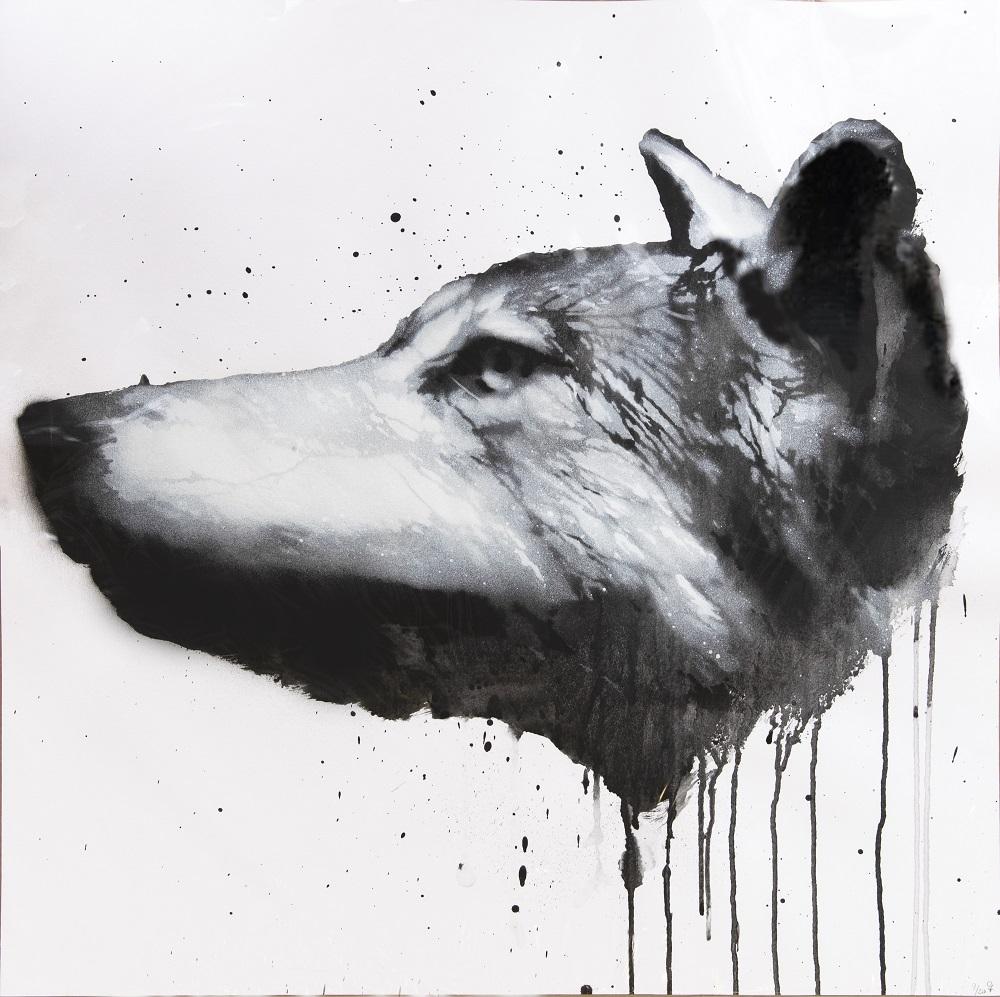 Canis Lupus no. 1