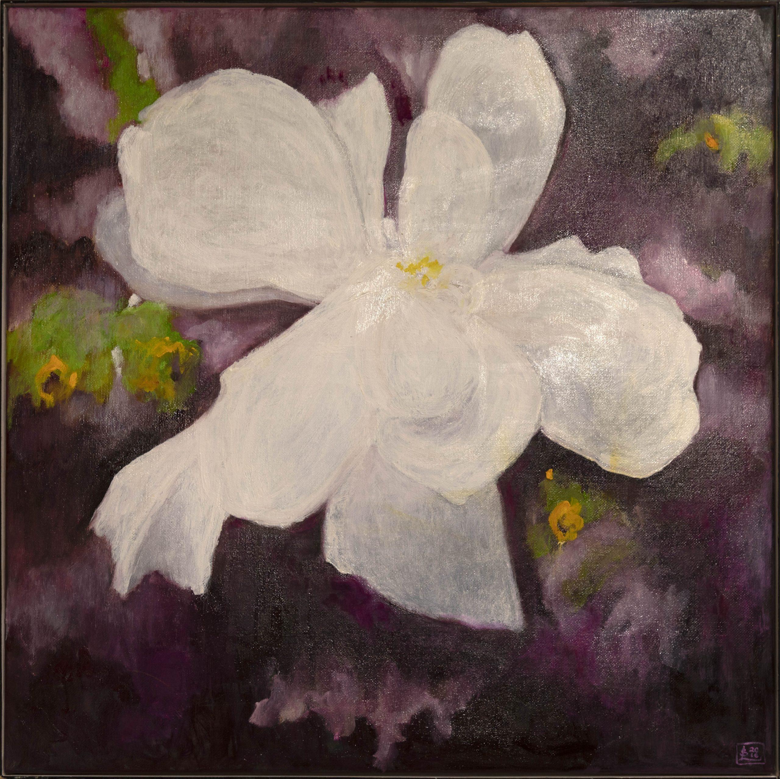 Suuri valkoinen kukka violetilla taustalla.